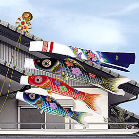 鯉のぼりの友禅華の舞鯉
