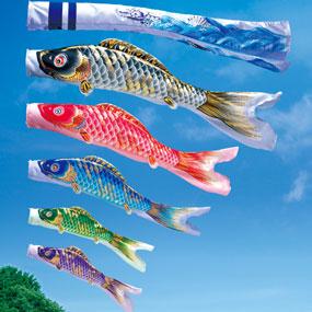 鯉のぼりの健翔はやぶさ鯉